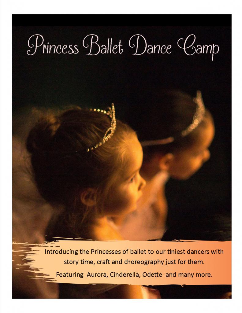 Princess Ballet Camp flyer